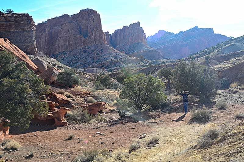Sandstone cliffs and desert shrubs